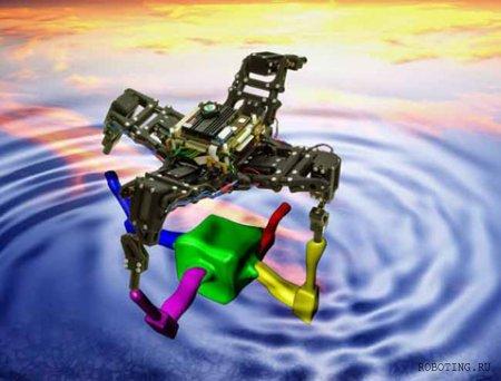 Морская звезда-робот учится ходить и хромать