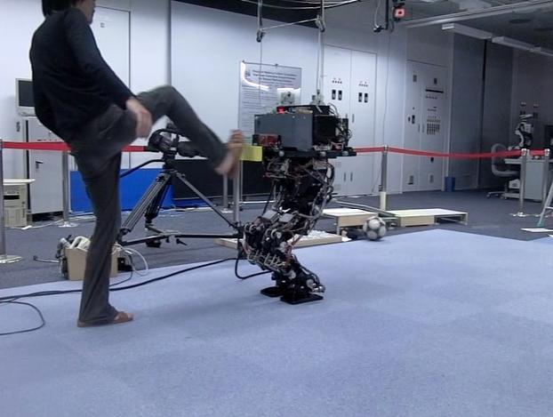 Японский робот-неваляшка