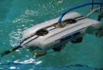 Победа в чемпионате по подводной робототехнике