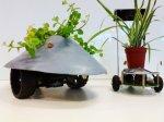 Sunlight-Hunting Drone следят за вашими комнатными растениями