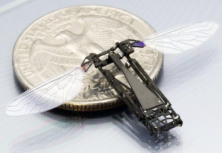 """Ученые разрабатывают робопчел для опыления цветов """" Роботы, робототехника, робот"""